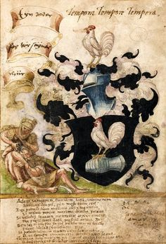 Anonymes Wappen (f°8r). -- «Stammbuch von Joh. Mich. und Joh. Carl Heuß«, Straßburg, um 1560. [Badische Landesbibliothek Karlsruhe 2978].
