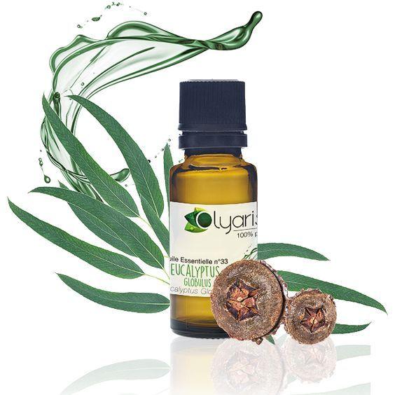 Best 25 huile essentielle eucalyptus ideas on pinterest for Vinaigre et huile essentielle