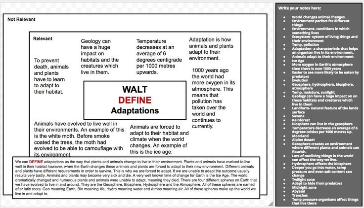 """Lachlan Hull on Twitter: """"Defining Adaptations using a HOT SOLO Define Map #SOLOTaxonomy - Fantastic to see students developing thinking beyond just stating content https://t.co/4fZsvRbBUo"""""""