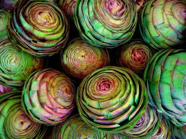 Globe artichokesNature, Kitchens Art, Colors Mixed, Green, Colors Palettes, Colors Schemes, Paris Hotels, Recycle Art, Globes Artichokes