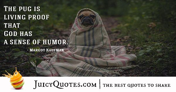 Quotes About Dogs - 35
