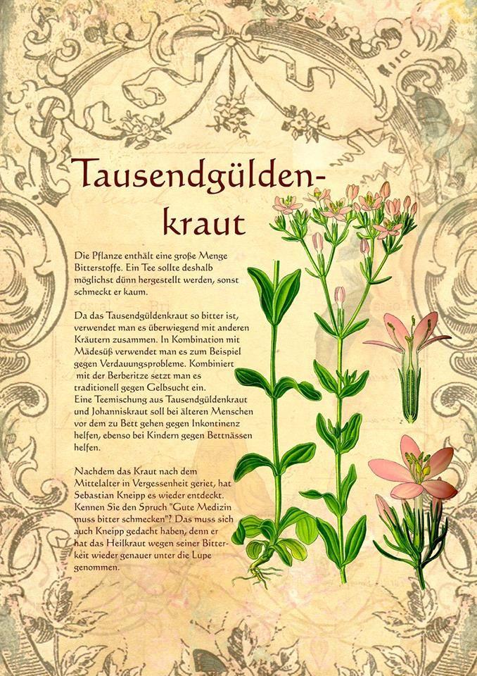 Tausendgüldenkraut http://www.kraeuter-verzeichnis.de/