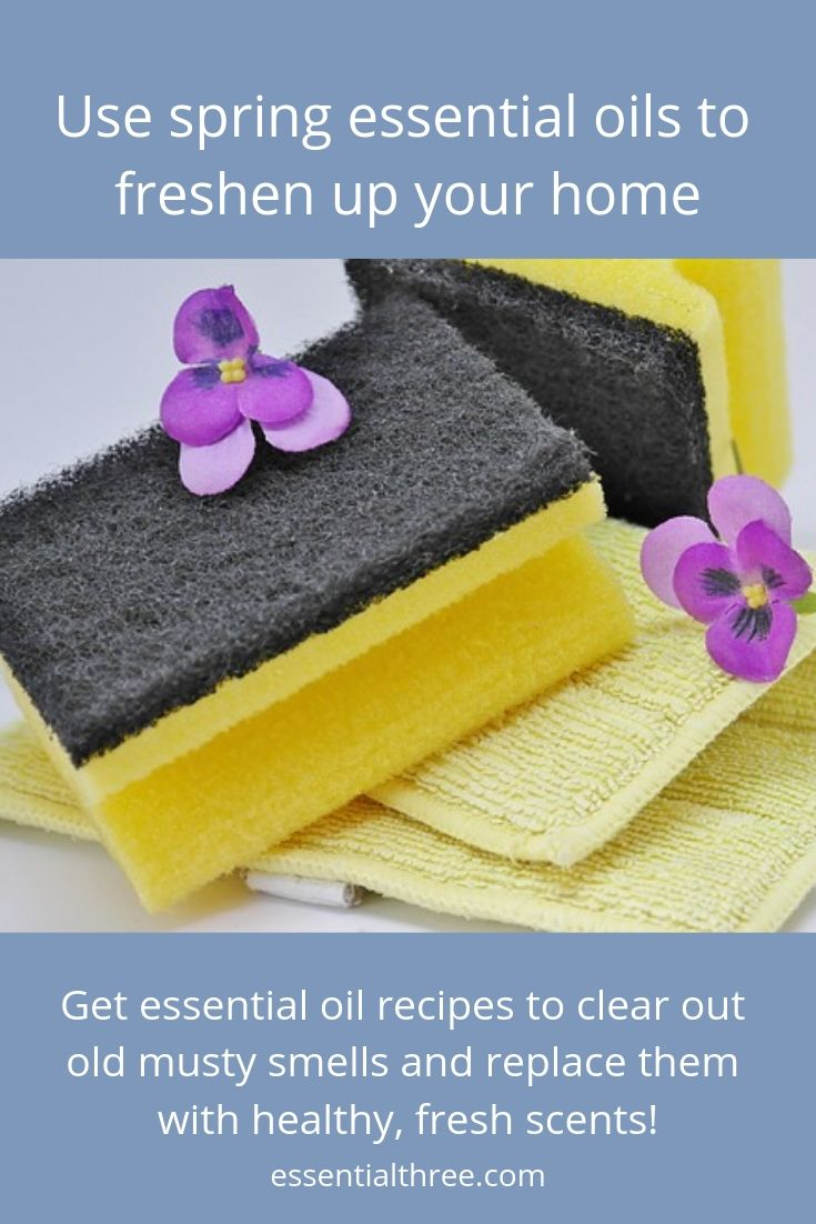how to clean blackstone griddle after winter