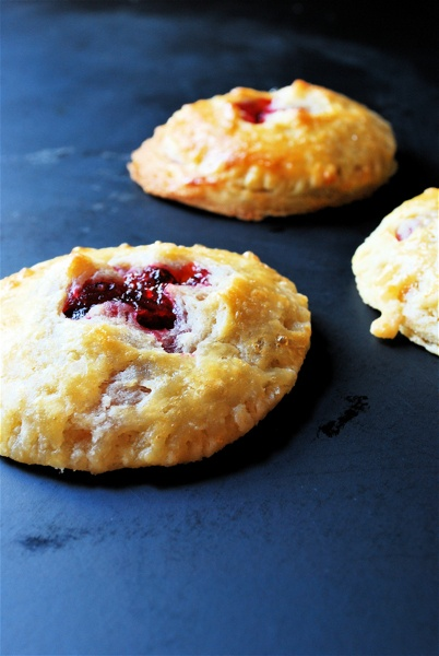 Cranberry hand pies. Maybe something to make with sweetened up ...