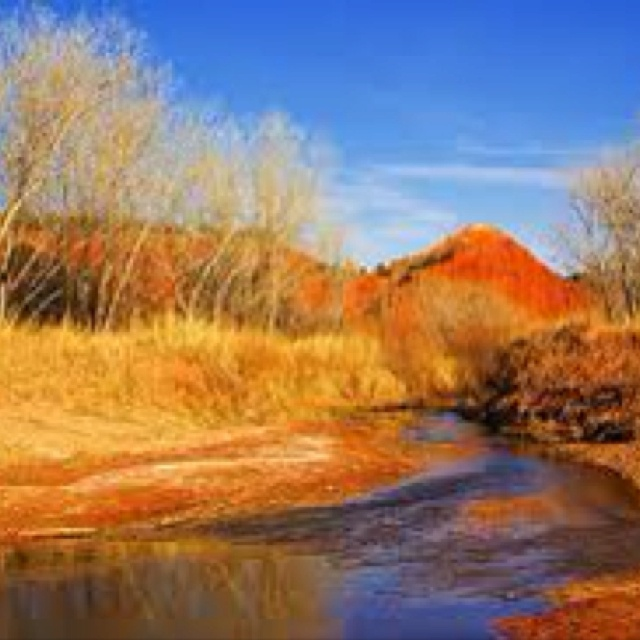 Possible road trip.  Palo duro canyon! Near Amarillo, TX