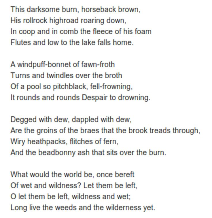 Inversnaid by Gerard Manley Hopkins. oh, I love this one.