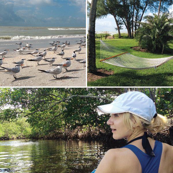 Oubliez la clinquante Miami. La Floride, c'est aussi des îles vertes, certaines désertes, de l'eau chaude, et ce, à moins de quatre heures de vol direct! La Floride sauvage - Châtelaine