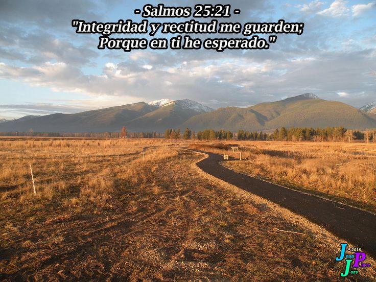 """– Salmos 25:21 – """"Integridad y rectitud me guarden; Porque en ti he esperado."""""""