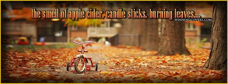 Fall autumn change of seasons hd quality photos for sharing on facebook timeline cover banners