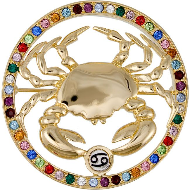 Image detail for -Cancer Star Sign Brooch / Zodiac Jewellery.