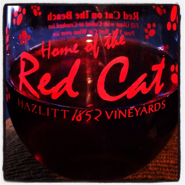 Red cat <3 wine time!