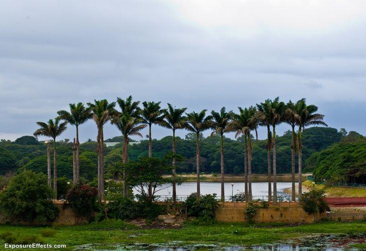 Lalbagh Botanical Garden in Bangalore, Karnataka