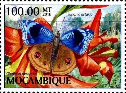 Stamp: Junonia artxia (Mozambique) (Butterflies) Col:MZ 2017-01/3