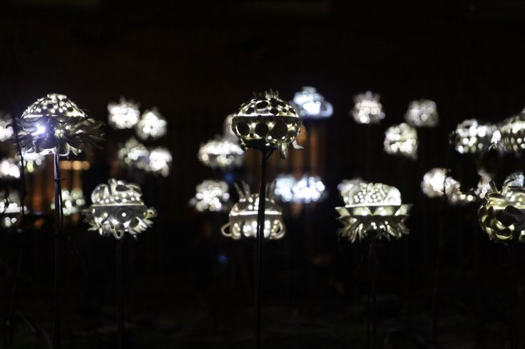 Light Night by Jes Hill