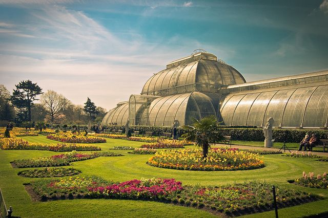 Kew Gardens are 121 hectares of beautiful gardens and botanical glasshouses located between Richmond and Kew (in southwest London) -- Kew Garden, UK