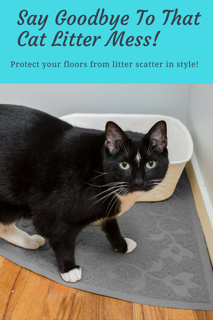 """Are you a cat lover who wants to keep your home litter free? Then we've got a great news for you!  This special offer will help you reduce cat litter scatter instantly AND helps you keep your pets environment clean.  It's called """"Easyology Premium Cat Litter Mat"""" and its ON SALE on Amazon today!"""