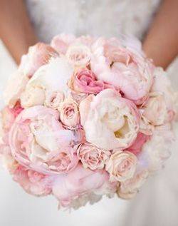peonies and roses.. I'm not a fan of roses.. but for my bouquet i want peonies and african daisies!