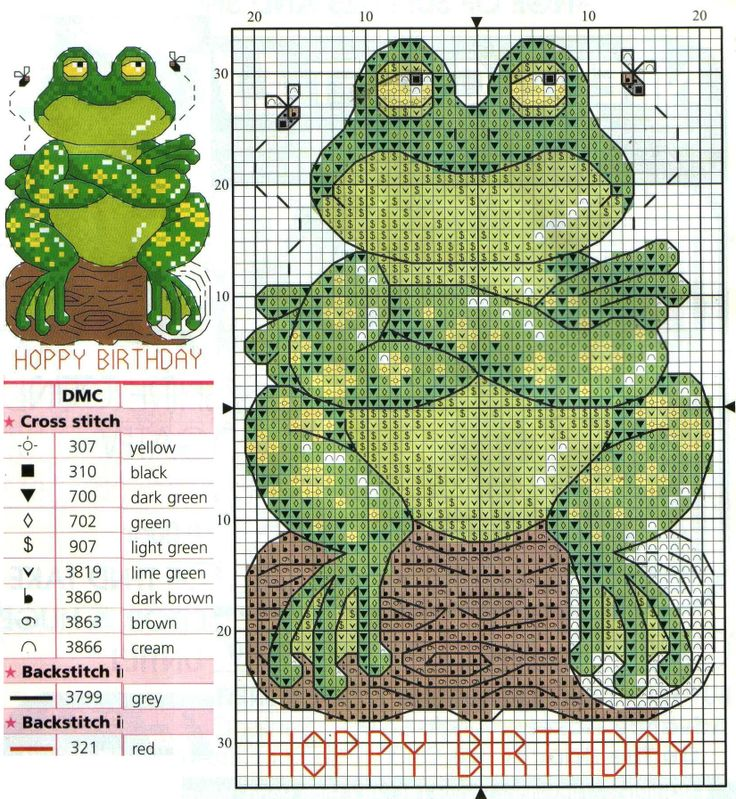 Hoppy Birthday Frog