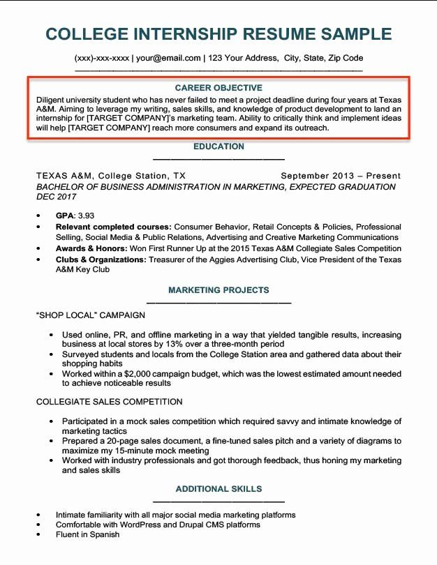 Marketing Manager Resume Objective New Resume Objective Examples For Students And Professionals Resume Objective Examples Student Resume Resume Objective