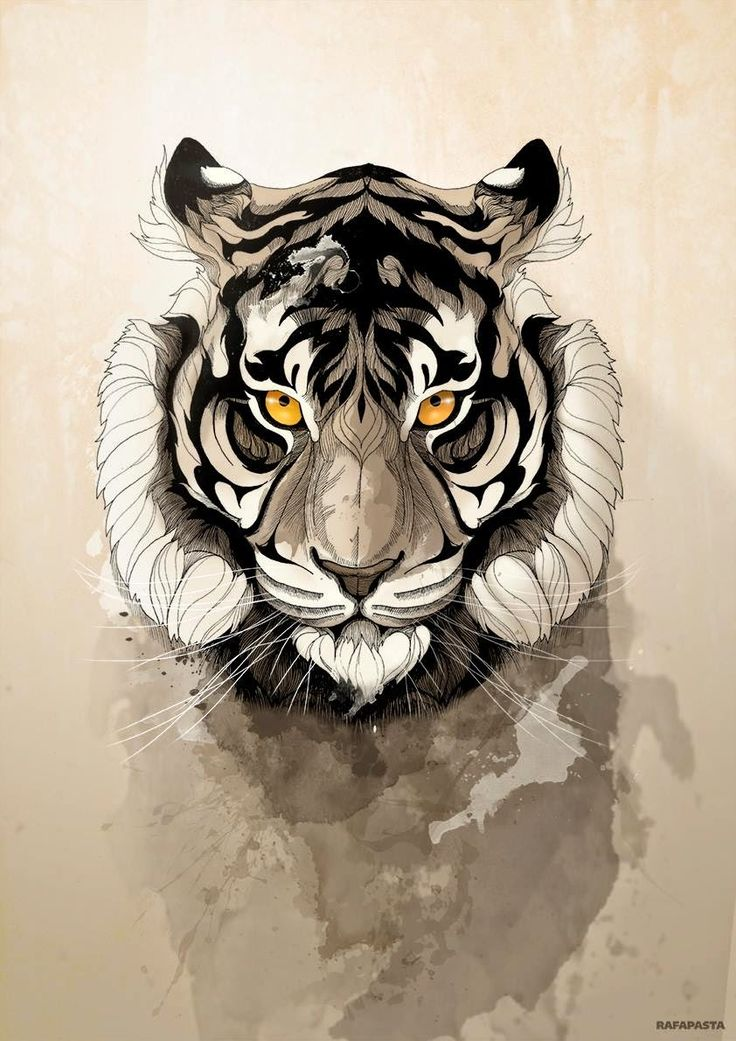 Wild Animals de Rafapasta