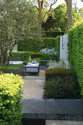 The Daily Telegraph Garden by Marcus Barnett