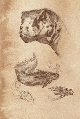 quickhidehere.blogspot.com: Character in Dragons