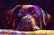 """New artwork for sale! - """" Dog Face Animal Rottweiler  by PixBreak Art """" - http://ift.tt/2tu4r9P"""