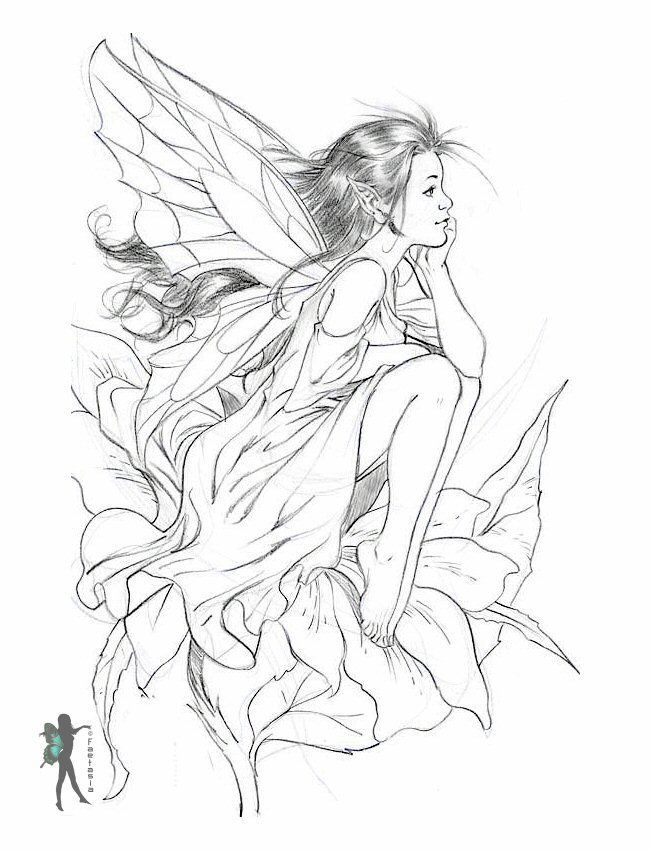 The 25+ best Fairy coloring pages ideas on Pinterest   Colouring ...
