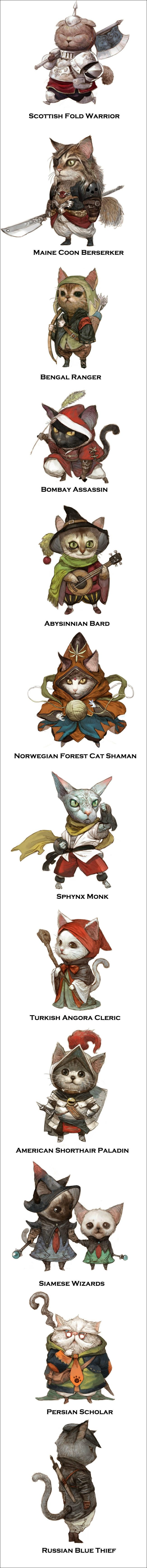 Role Playing Floofs - Gamer classes as cat breeds. The Maine Coon Berserker!!