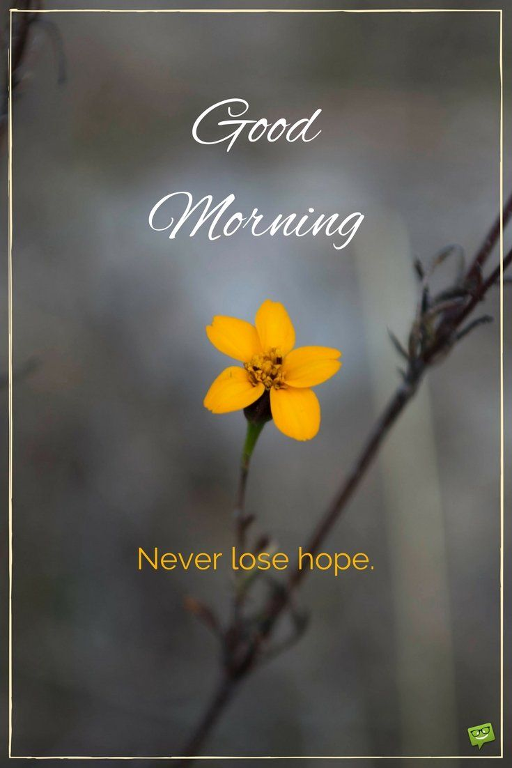 Good Day Quotes Inspirational: Best 25+ Good Morning Quotes Ideas On Pinterest
