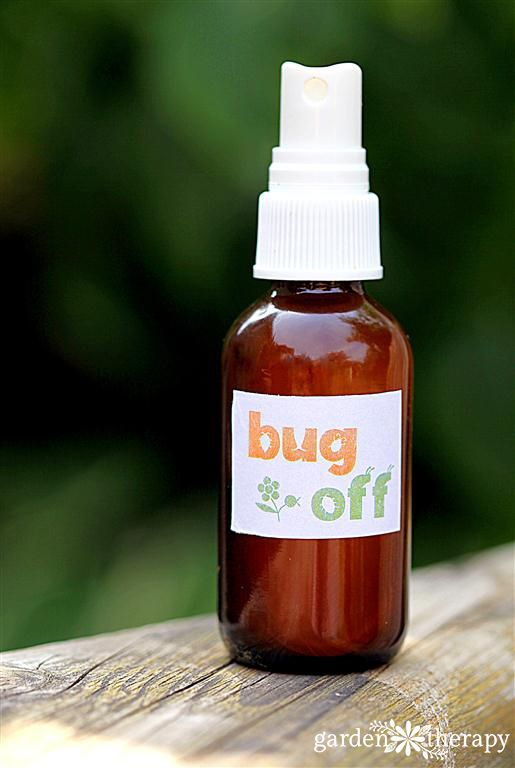 This All-Natural Bug Spray Recipe is for preventing mosquitoes from biting you while keeping your skin from being doused in harsh chemicals. Easy to make too!