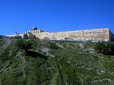 Wadi Al - Joz, Al Haram Al Qudsi Ash-Sharif, Falasteen