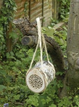 friends of the earth bee log - see more of our charity Christmas gifts for gardeners here! http://www.charitychoice.co.uk/blog/charity-christmas-gifts-for-gardeners/109