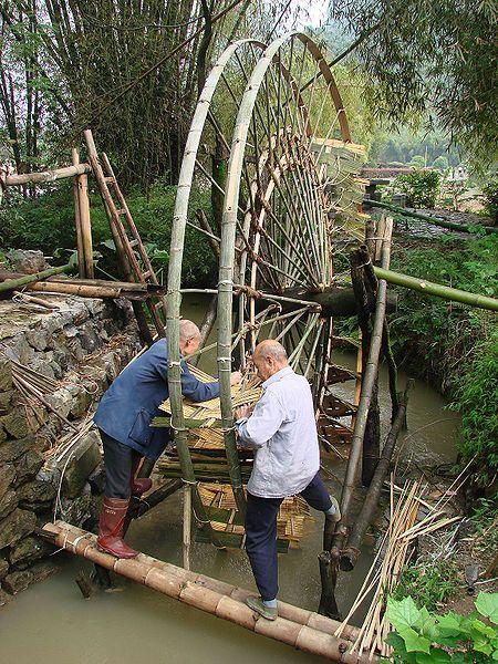 19 Interesting Ways We Use Bamboo