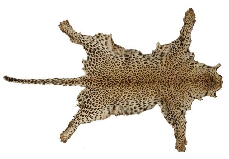 art_deco_1930s_real_leopard_skin_throw_rug_19177d.jpg (750×521)