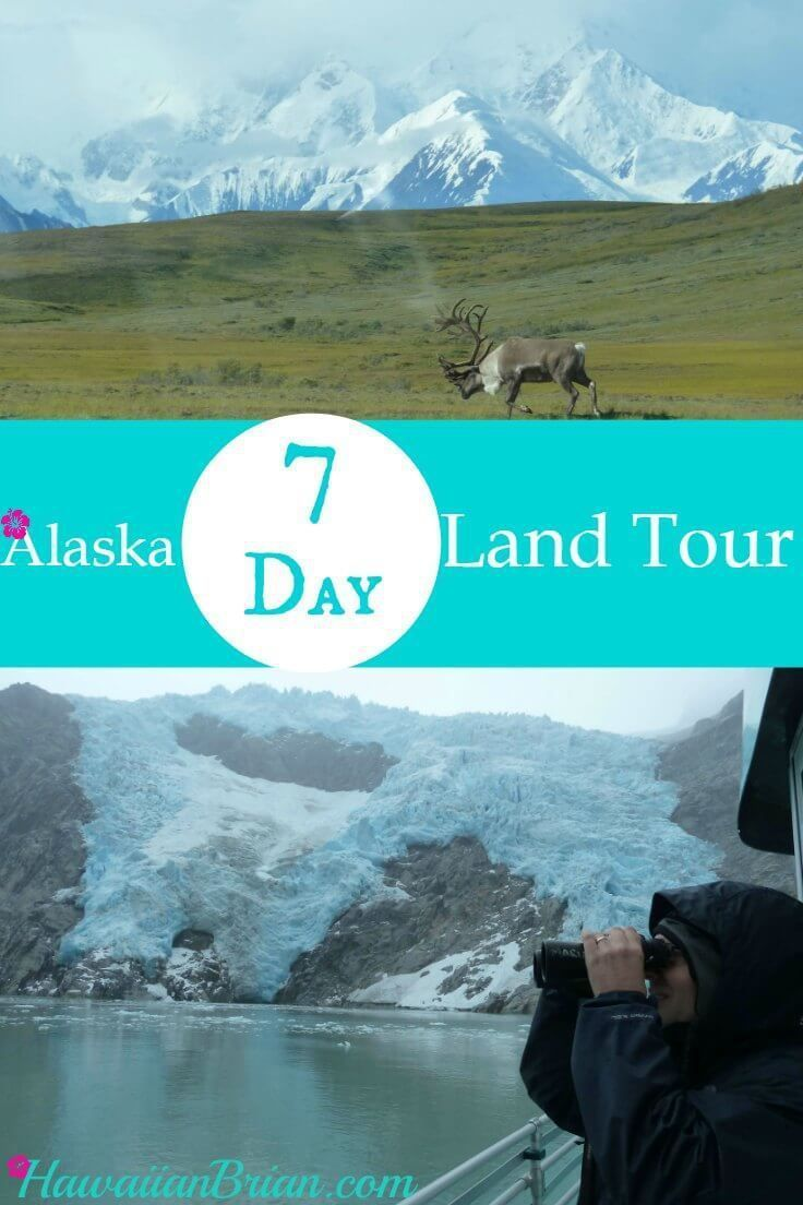 In this article I've provided my best advice for a one week land tour of Alaska.  Alaska, Alaska cruise, Alaska travel, Alaska action, Alaska hiking, Alaska photography, Alaska vacation, Anchorage Alaska, things to do in Alaska, Anchorage, Denali, Iditarod Trail Sled Dog Museum, Seward, Exit Glacier, Kenai Fjords Cruise,  Fishing, Alaska Wildlife Conservation Center