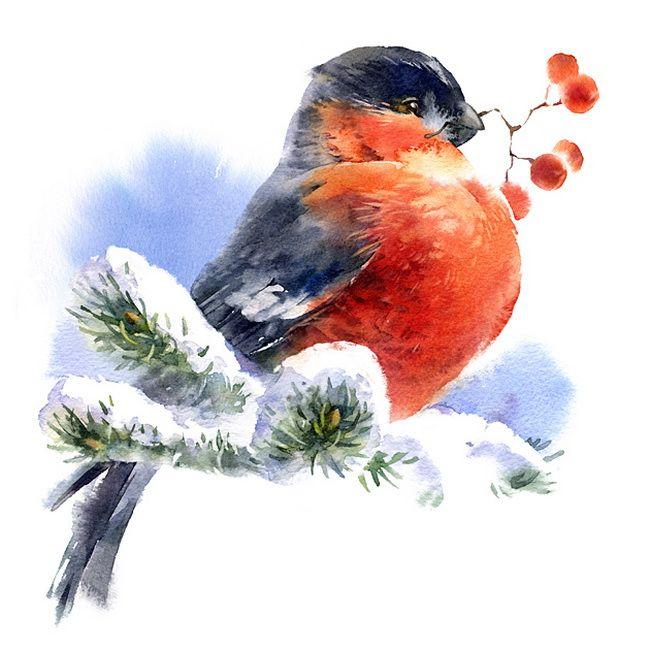 шляхта новогодние птички картинки подскажет