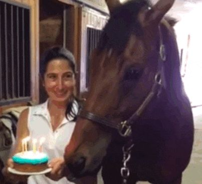 This horse is having the best birthday ever