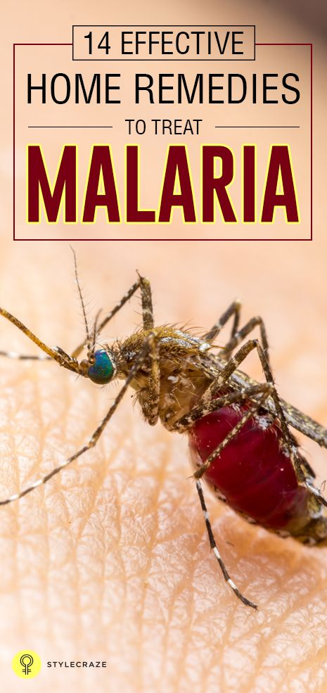 Malaria is an infectious disease caused by mosquito borne parasite. There are certain home remedies for malaria that can help in curing the ...