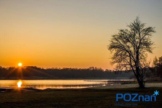 Poznan Poland, [fot. P. Florczyk]