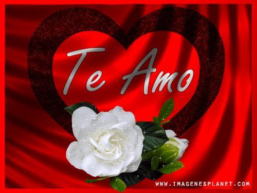 Gif Animados De Amor Con Imagenes De Rosas Y Frases Romanticas Gif Love Pinterest