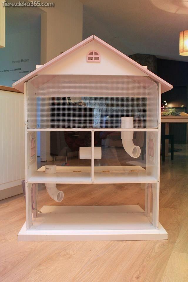 Dasjenige Beste Hamsterhaus Dasjenige Sie Jetzt Erstellen Konnen Hamsterhaus Hamster Und Hamster Spielzeug
