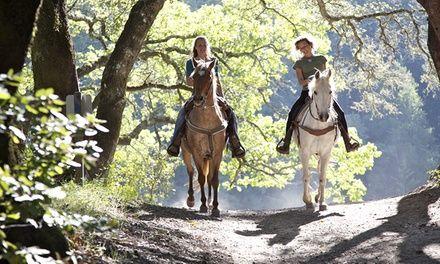 Haras Du Bois Marie à Saint Macaire Du Bois : Balade à cheval proche de Saumur: #SAINTMACAIREDUBOIS 21.90€ au lieu de 43.00€ (49% de…