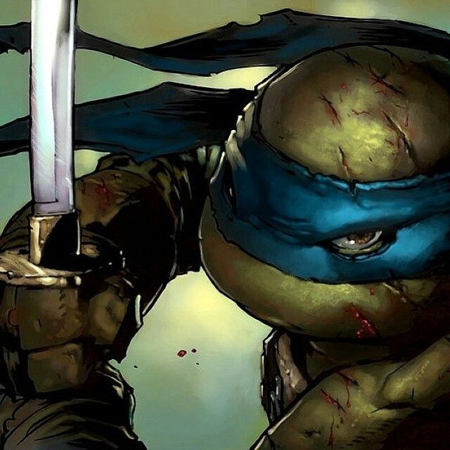 Leonardo ninja turtle face - photo#55