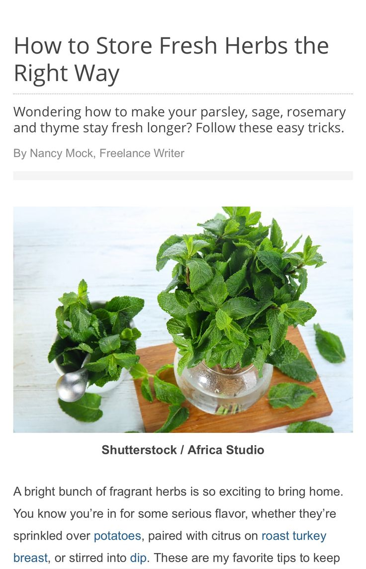 Wondering how to store those fresh herbs from the market or your garden? Here are my favorite tips to keep them fresher longer! By Nancy Mock https://www.tasteofhome.com/article/store-fresh-herbs-right-way/