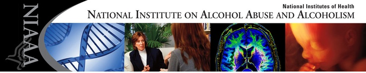 National Institute on Alcohol Abuse and Alcoholism (NIAAA), part of the National Institutes of Health and Department of Health and Human Services. The NIAAA logo shows four images: DNA, two women talking, a brain scan, and a fetus