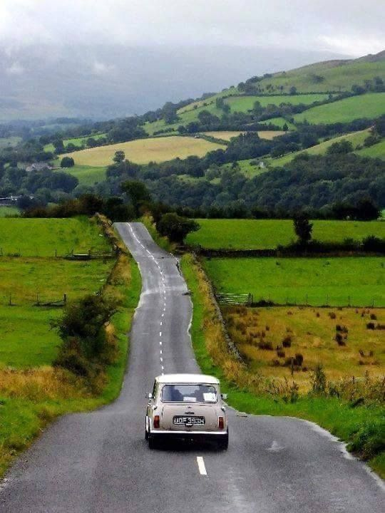 Classic Mini. Classic British country.                                                                                                                                                     More