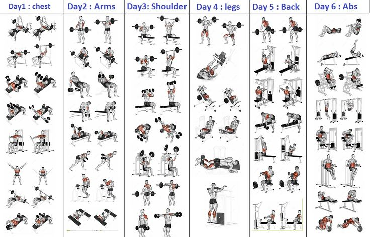 Top 5 Day Workout Routine For Man - all-bodybuilding.com