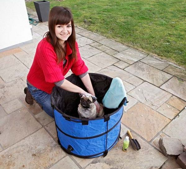 La baignoire pour chien, j'ai testé, j'ai aimé http://www.animalcompagnie.com/baignoire-chien-jai-teste-jai-aime.html #chien #animaux