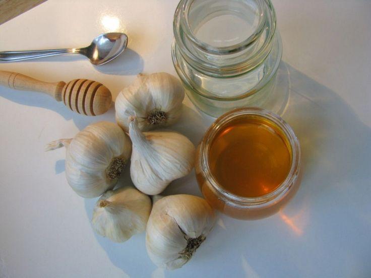Mézes fokhagymából készítünk emberi vírusirtót   Hobbikert.hu